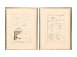 Accessories-1549